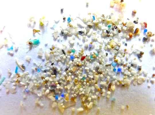 微塑料危害已无所不在 人类胎盘首现微塑料颗粒